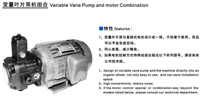 液压电机叶片泵永磁体涡流场有限元分析图片