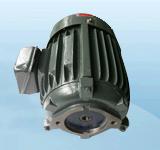2HP-20L电机