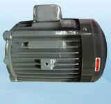 3HP-30L电机