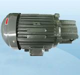 5HP-长嘴电机