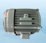 7.5HP-P2电机